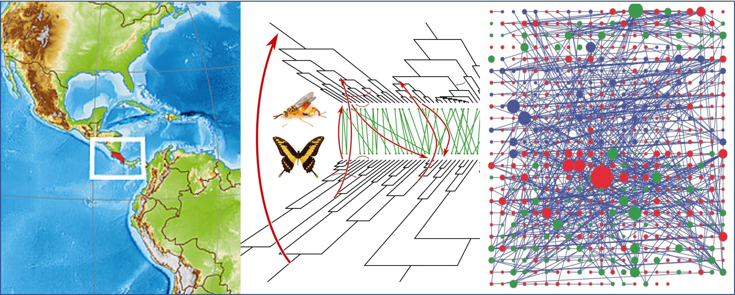 Une illustration schématique du projet Horizon